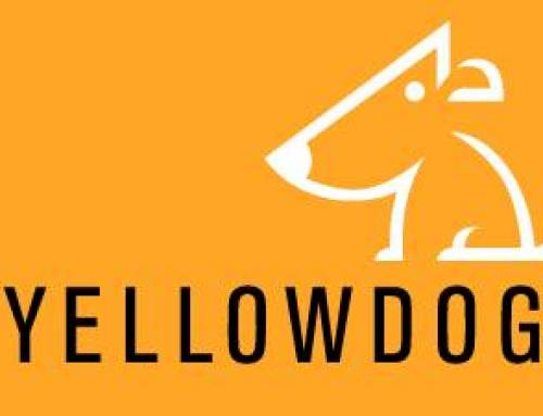 Business Profile: YellowDog